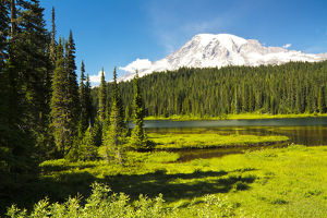Mount Rainier; Reflection Lakes; Mount Rainier National Park; Washington; USA