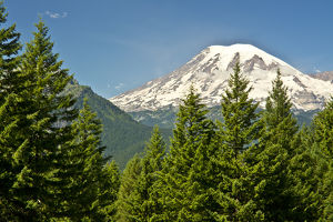 Mount Rainier, snow coverered, road to Paradise, Mount Rainier National Park, Washington