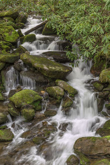 Mountain stream, Great Smoky Mountains National Park, North Carolina