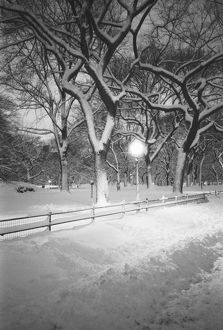 NA, USA, New York, New York City. Snow, covered promenade in Central Park