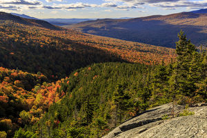 New Hampshire's White Mountain National Forest