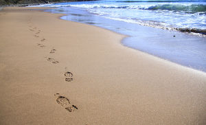 North America, Canada, Nova Scotia, footprints in the sand near the Cabot Trail