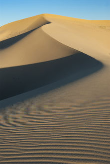 North America, USA, California. Sand dunes in Mojave Trails National Monument, CA