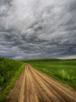 North America;USA;Washington;Palouse Country;Stormy Day Traveling through Country
