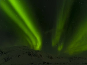 europe/iceland/northern lights aurora borealis near hoefn mountains