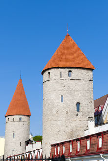 The old city walls of the Old Town of Tallinn, UNESCO World Heritage Site, Estonia