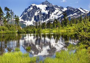 Picture Lake Evergreens Mount Shuksan Mount Baker Highway Snow Mountain Trees Washington