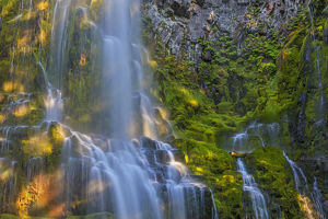 Proxy Falls in the Three Sisters Wilderness, Oregon, USA