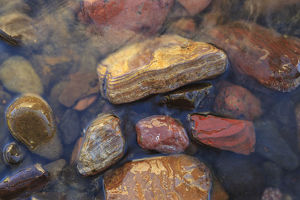 places/river rocks naturally polished lower deschutes river