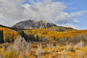 Rocky Mountains Colorado Fall Colors of Aspens, Keebler Pass, with mountain looming above