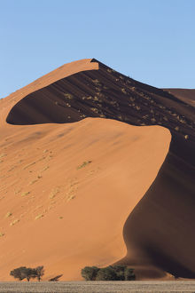 An s-curve on a tall orange-sand dune in Sossusvlei within Namib-Naukluft National Park