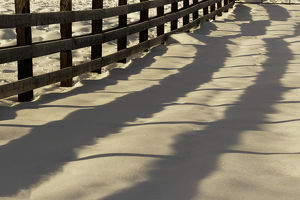 Shadow pattern of fence on snow in early morning, Kalispell, Montana