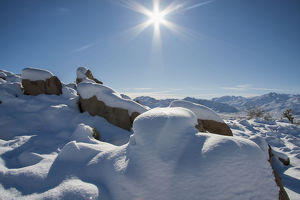 Snow at Joshua Tree National Park, California
