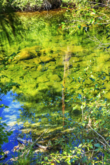 Summer Colors Green Blue Reflection Wenatchee River Reflections Stevens Pass Leavenworth
