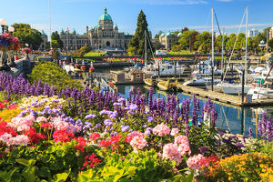 canada/summer flowers inner harbour parliament buildings