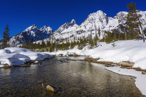 usa/wyoming/tetons winter cottonwood creek grand teton national
