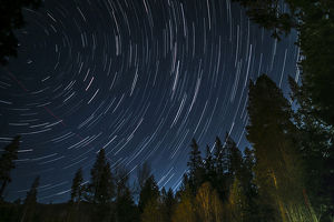 Time lapse photograph showing star trails above the forest near Lake Tahoe, CA