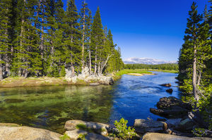 The Tuolumne River, Tuolumne Meadows, Yosemite National Park, California USA