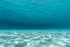 Underwater photograph of a textured sandbar in clear blue water near Staniel Cay