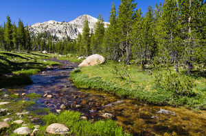 Unicorn Creek, Tuolumne Meadows, Yosemite National Park, California USA