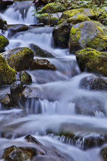 United States, Oregon, Columbia River Gorge, Water Cascading over Rocks at Punchbowl