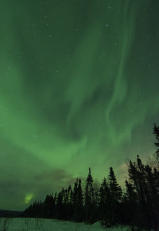 US, AK, Fairbanks. Northern Lights display