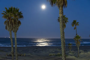 US, CA, Oxnard. Moonlight reflected on Pacific Ocean during full moonet