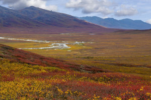 USA, Alaska, Brooks Range. Landscape of tundra and Dietrich River