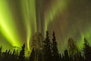 USA, Alaska, Fairbanks. Northern lights patterns and colors