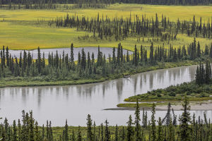USA, Alaska, Nenana River Valley. Landscape of valley, river, and pond. Credit as