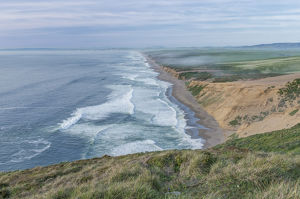 USA, CA, Point Reyes National Seashore, Seashore Looking Towards Point Reyes Beach