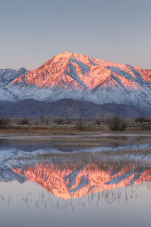 USA, California, Bishop. Sierra Crest reflects in Farmer's Pond at sunrise. Credit as