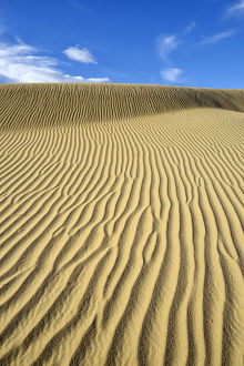 USA, California, Death Valley, Ripples in the sand, Mesquite Flat Sand Dunes