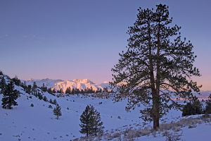 USA, California, Sierra Nevada Range. Mountain landscape at sunrise
