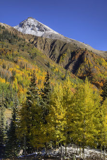 USA, Colorado. autumn color in the San Juan Mtns, Colorado Credit as: Dennis Flaherty