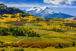 USA, Colorado, fall colors, vista