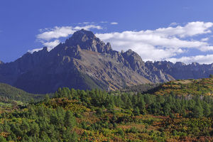 USA, Colorado, Mount Sneffels. Mountain landscape in autumn
