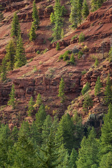 USA, Colorado. Mountain scenic. Credit as: Dennis Flaherty / Jaynes Gallery /