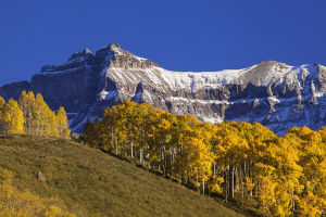 USA, Colorado, San Juan Mountains. Mountain and autumn-colored forest. Credit as