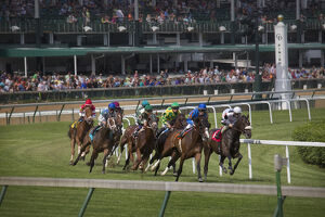 usa kentucky louisville horses racing turf
