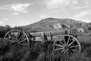 USA, Montana, Bannack State Park Old wagon made of wood in grass near mining ghost