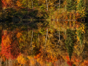 USA, New Hampshire, White Mountains, Autumn reflections on Coffin Pond
