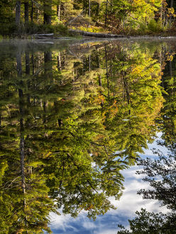 USA, New Hampshire, White Mountains, Reflections in Red Eagle Pond
