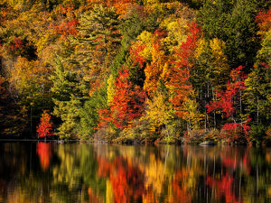USA, New Hampshire, White Mountains, Fall reflections on Russell Pond