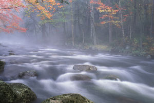 USA, New York, Adirondacks, Big Moose River rapids in Fall