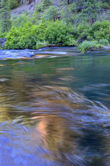 USA, Oregon, Deschutes National Forest, Fluid water and reflections along the Metolius