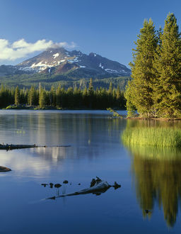 USA, Oregon, Deschutes National Forest, South side of Broken Top rises above coniferous