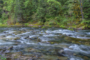 USA, Oregon, Mount Hood National Forest, Salmon-Huckleberry Wilderness, Salmon River