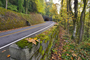 USA, Oregon, Portland. Macleay Park and road in autumn