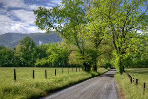 USA, Tennessee, Great Smoky Mountains National Park. Dirt road in Cades Cove. Credit as
